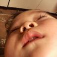 ハルの寝顔